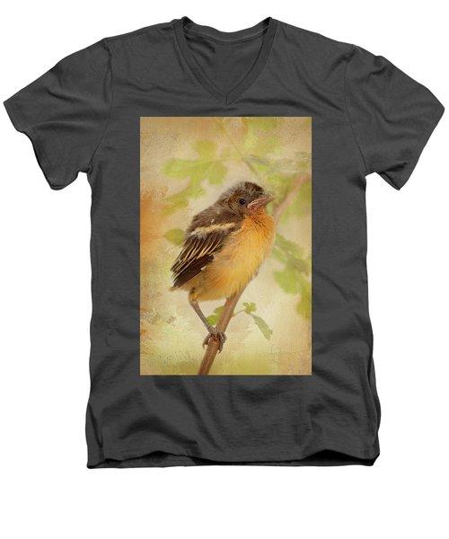 Spring's Sweet Song Men's V-Neck T-Shirt