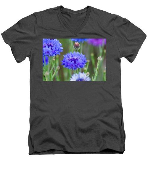 Springtime Blues Men's V-Neck T-Shirt