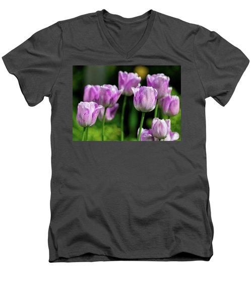 Springtime In Stratford Men's V-Neck T-Shirt