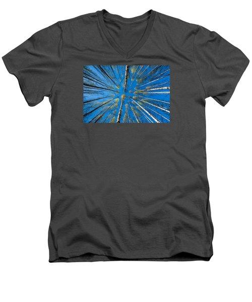 Springtime Men's V-Neck T-Shirt by Torbjorn Swenelius
