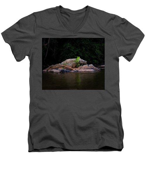 Sprout Men's V-Neck T-Shirt