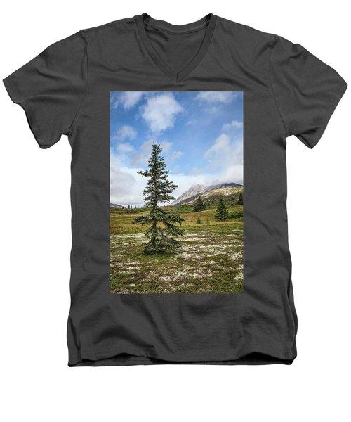 Spruce Tree In Summer Men's V-Neck T-Shirt