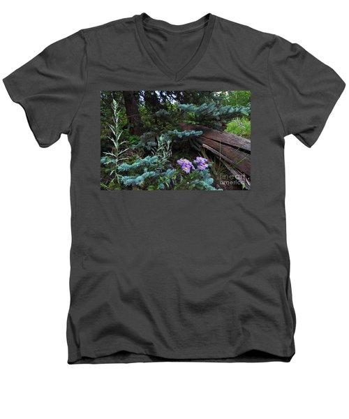 Spruced Up Asters Men's V-Neck T-Shirt