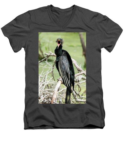 Squawking Anhinga Men's V-Neck T-Shirt