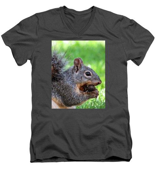 Squirrel 1 Men's V-Neck T-Shirt