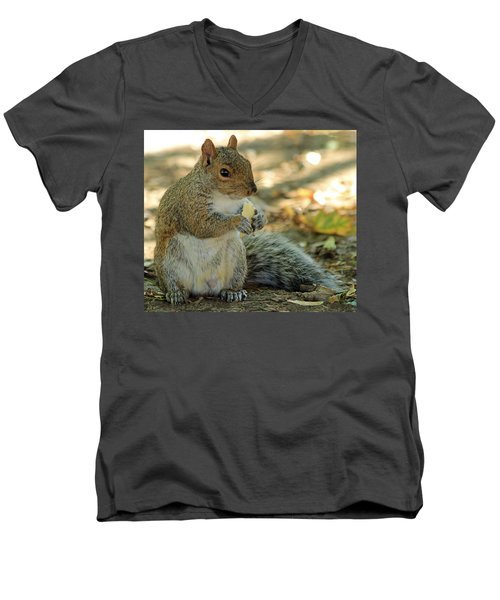 Squirrel Men's V-Neck T-Shirt by Anne Venissac