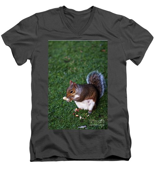 Squirrel Eating Men's V-Neck T-Shirt