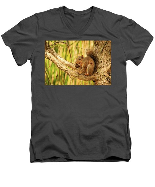 Squirrel In A Tree In The Marsh Men's V-Neck T-Shirt