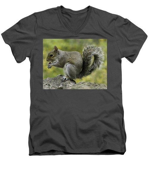 Squirrel, On The Hop Men's V-Neck T-Shirt