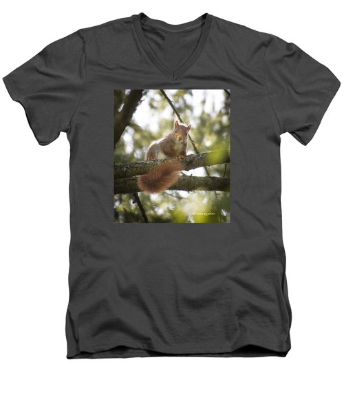 Men's V-Neck T-Shirt featuring the photograph Squirrel On The Spot by Stwayne Keubrick