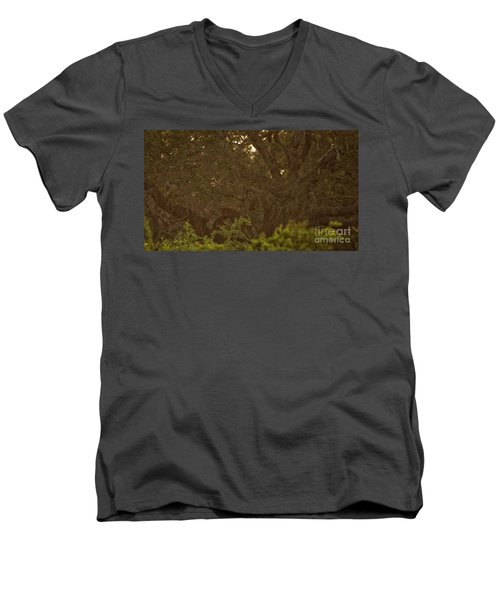 Sri Lankan Leopard And Wild Boar Men's V-Neck T-Shirt
