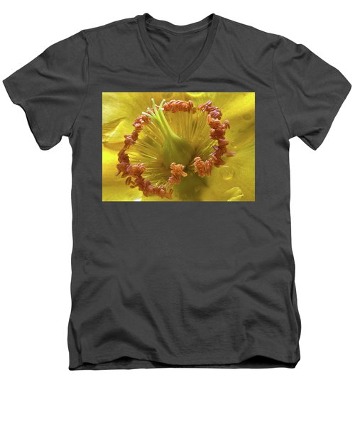 St Johns Wort Flower Centre Men's V-Neck T-Shirt