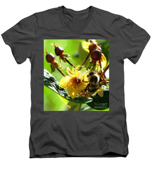 St. John's Wort Men's V-Neck T-Shirt