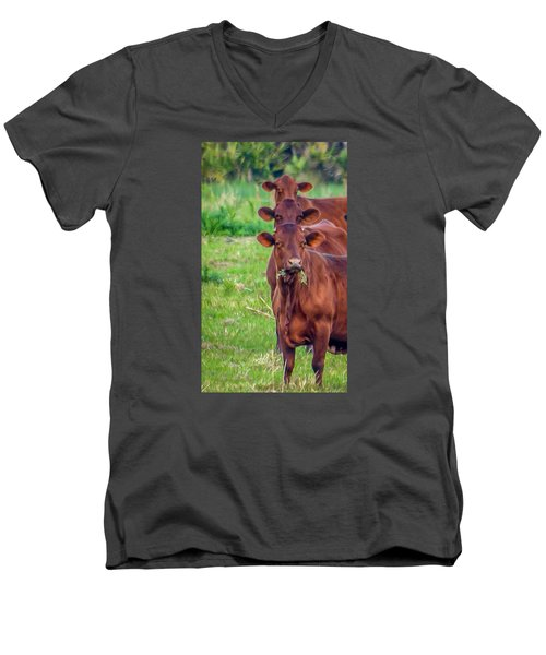 Stacked Up Cows          Men's V-Neck T-Shirt