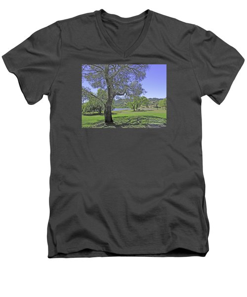 Stafford Lake Beauty Men's V-Neck T-Shirt