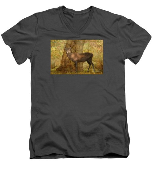 Stag Party Autumn Shade Men's V-Neck T-Shirt by Linsey Williams