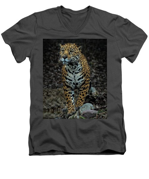 Men's V-Neck T-Shirt featuring the photograph Stalking by Phil Abrams