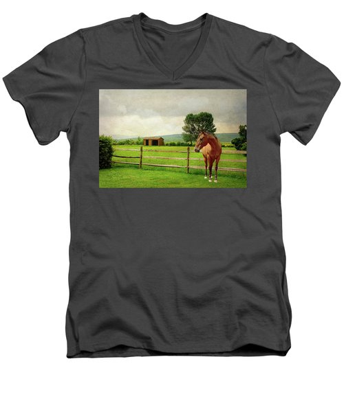 Men's V-Neck T-Shirt featuring the photograph Stallion At Fence by Diana Angstadt