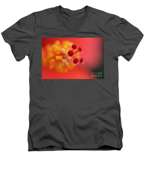 Stamen Men's V-Neck T-Shirt