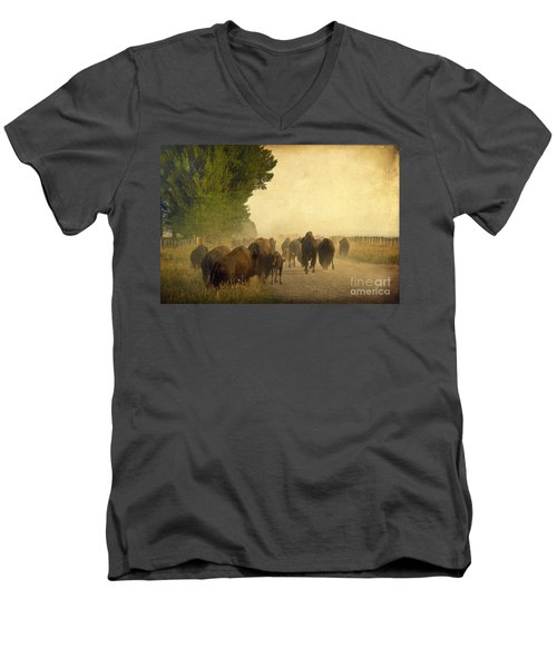 Stampede Men's V-Neck T-Shirt by Teresa Zieba
