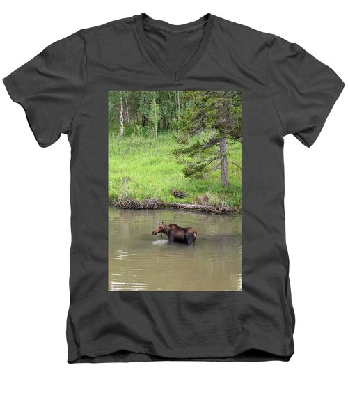 Men's V-Neck T-Shirt featuring the photograph Standing Guard by James BO Insogna