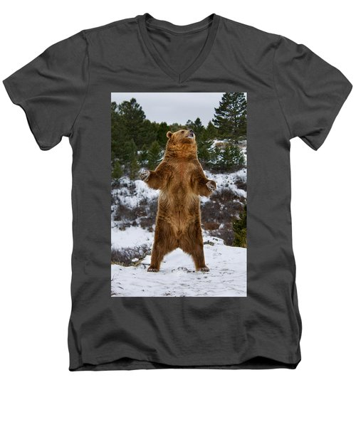 Standing Grizzly Bear Men's V-Neck T-Shirt