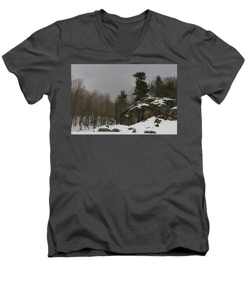 Standing Men's V-Neck T-Shirt