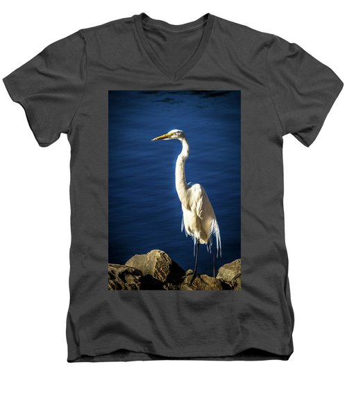 Standing Proud Men's V-Neck T-Shirt