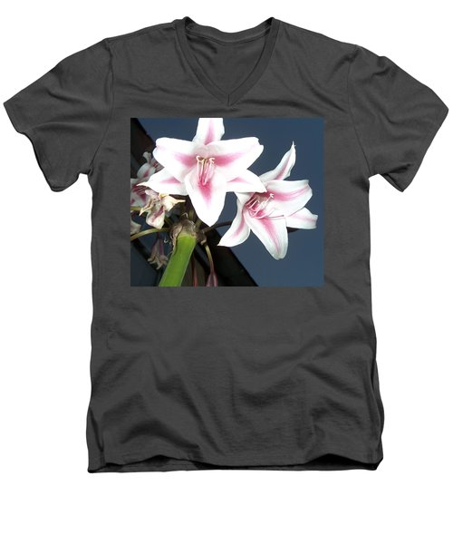 Star Flower Men's V-Neck T-Shirt