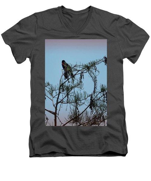 Stillness Men's V-Neck T-Shirt