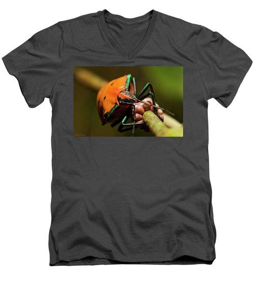 Stink Bug 666 Men's V-Neck T-Shirt by Kevin Chippindall