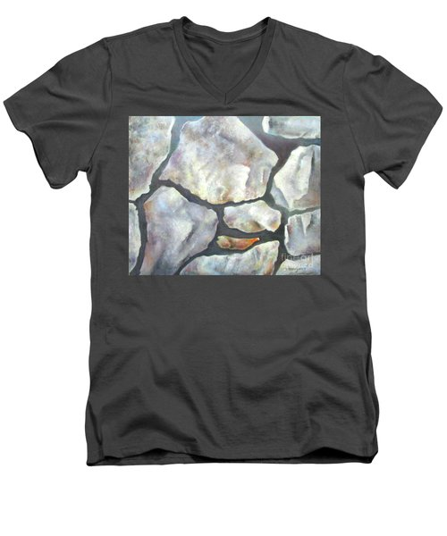 Stone Wall Men's V-Neck T-Shirt