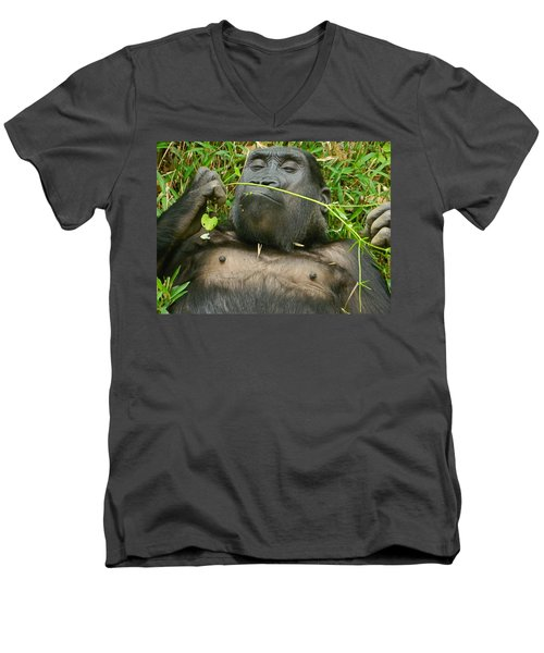 Stop And Smell The Grass Men's V-Neck T-Shirt by Emmy Marie Vickers