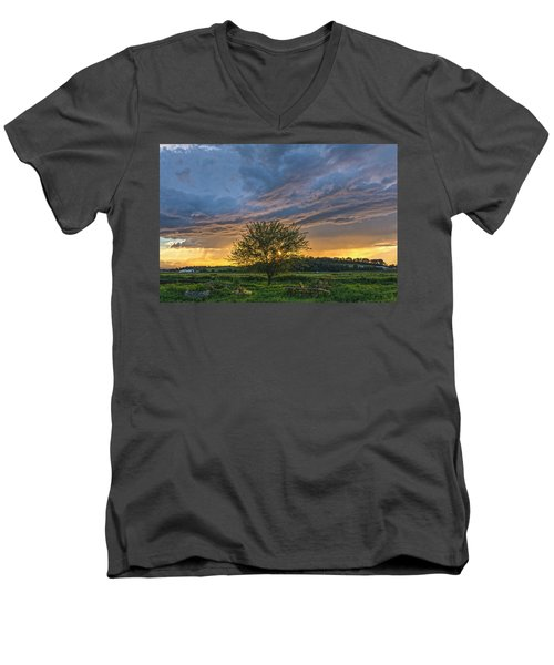 Storm Tree Men's V-Neck T-Shirt