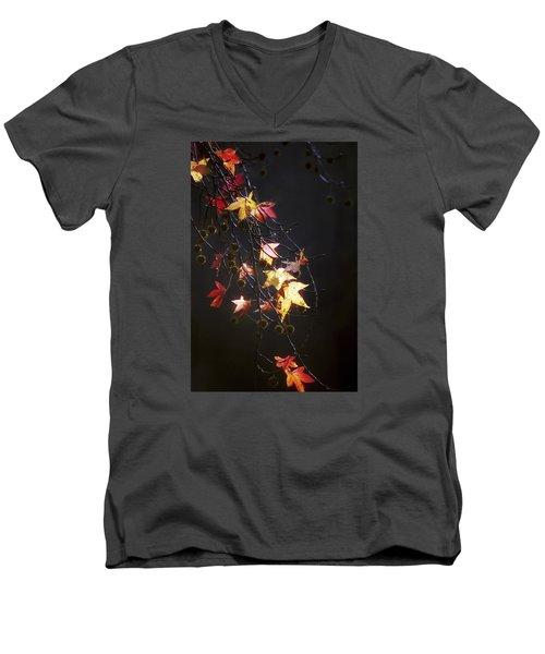 Storm's Bliss Men's V-Neck T-Shirt