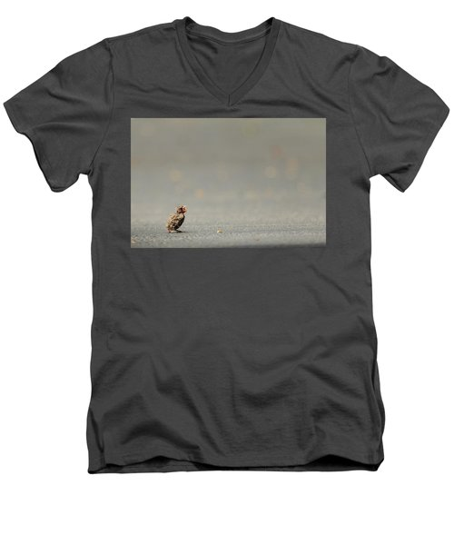 Story Of The Baby Chipping Sparrow 3 Of 10 Men's V-Neck T-Shirt by Joni Eskridge