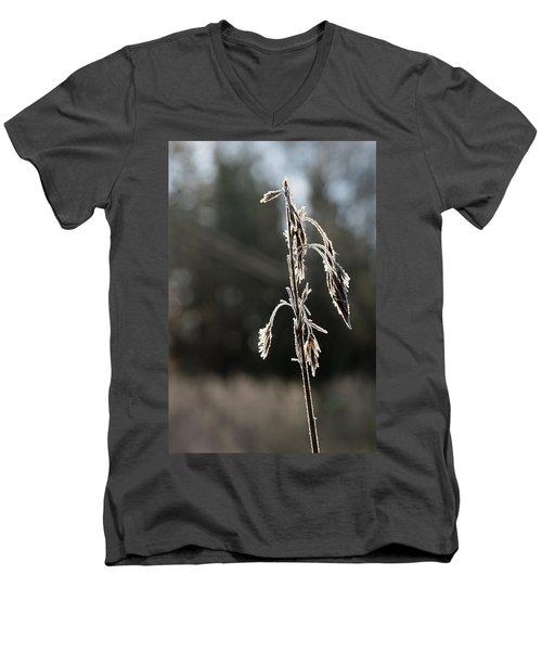 Straw In Backlight Men's V-Neck T-Shirt