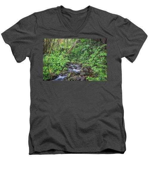 Stream In The Rainforest Men's V-Neck T-Shirt