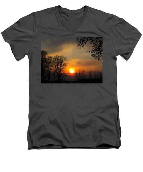Striking Beauty Men's V-Neck T-Shirt