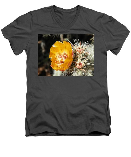 Striking Pose Men's V-Neck T-Shirt