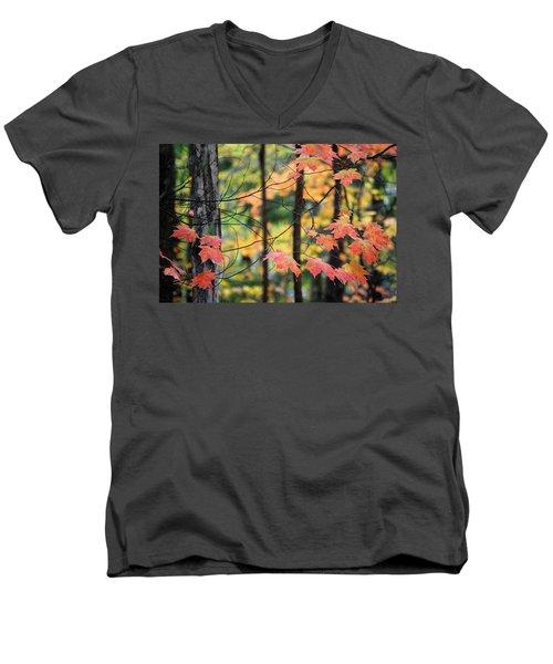 Stringing Up The Colors Men's V-Neck T-Shirt