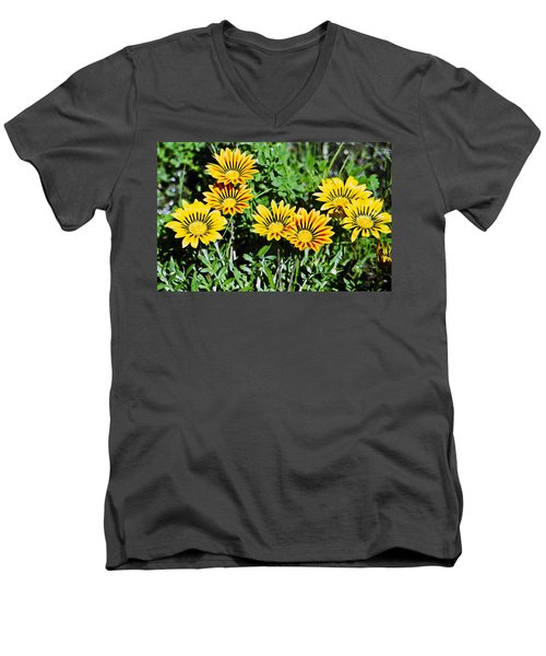 Striped Daisies--film Image Men's V-Neck T-Shirt