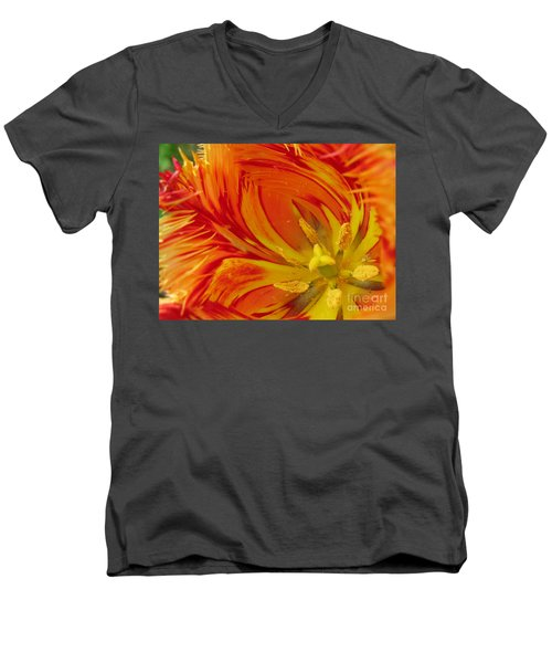 Men's V-Neck T-Shirt featuring the photograph Striped Parrot Tulips. Olympic Flame by Ausra Huntington nee Paulauskaite