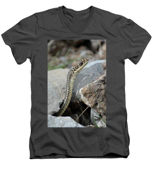 Striped Whipsnake, Masticophis Taeniatus Men's V-Neck T-Shirt