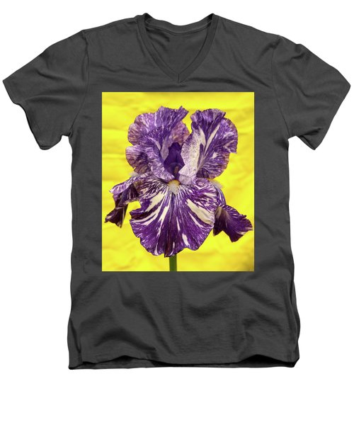 Stripped Lady Iris Men's V-Neck T-Shirt