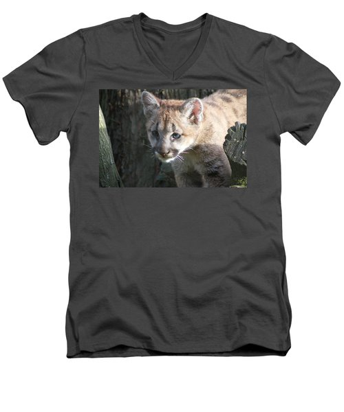 Men's V-Neck T-Shirt featuring the photograph Studying The Ways by Laddie Halupa