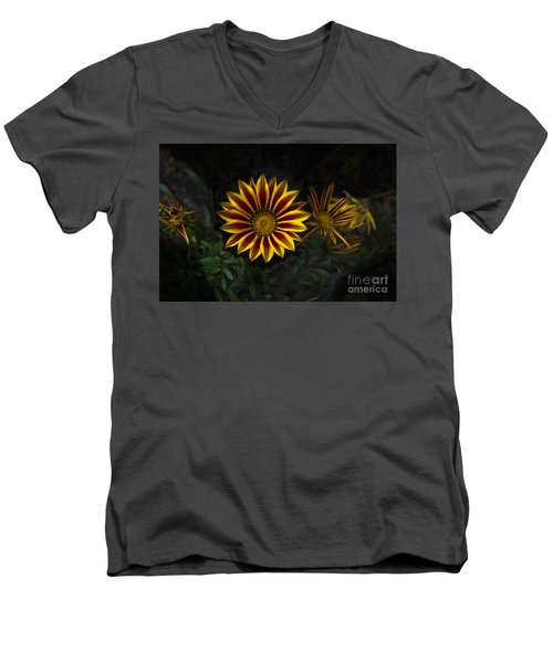 Stunning Flowers Abound Here Men's V-Neck T-Shirt