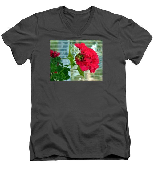 Stunning Red Geranium Men's V-Neck T-Shirt by Will Borden