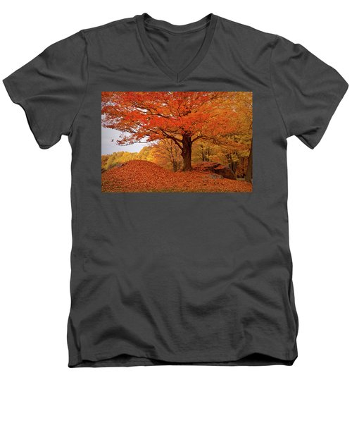 Sturdy Maple In Autumn Orange Men's V-Neck T-Shirt