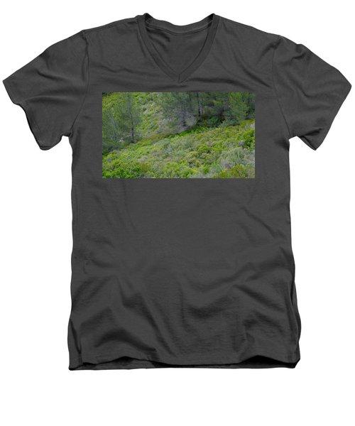 Subtle Spring Men's V-Neck T-Shirt